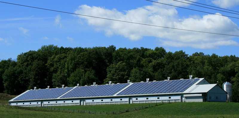 Legge di Stabilità 2016: le nuove norme sulla green economy al collegato ambientale